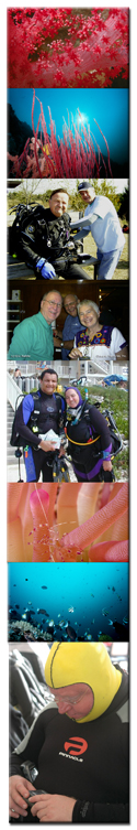 Recreational Diving Photos
