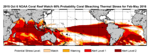 October 2015-January 2016: NOAA's standard 4-month bleaching outlook shows a threat of bleaching continuing in the Caribbean, Hawaii and Kiribati, and potentially expanding into the Republic of the Marshall Islands. (Credit: NOAA