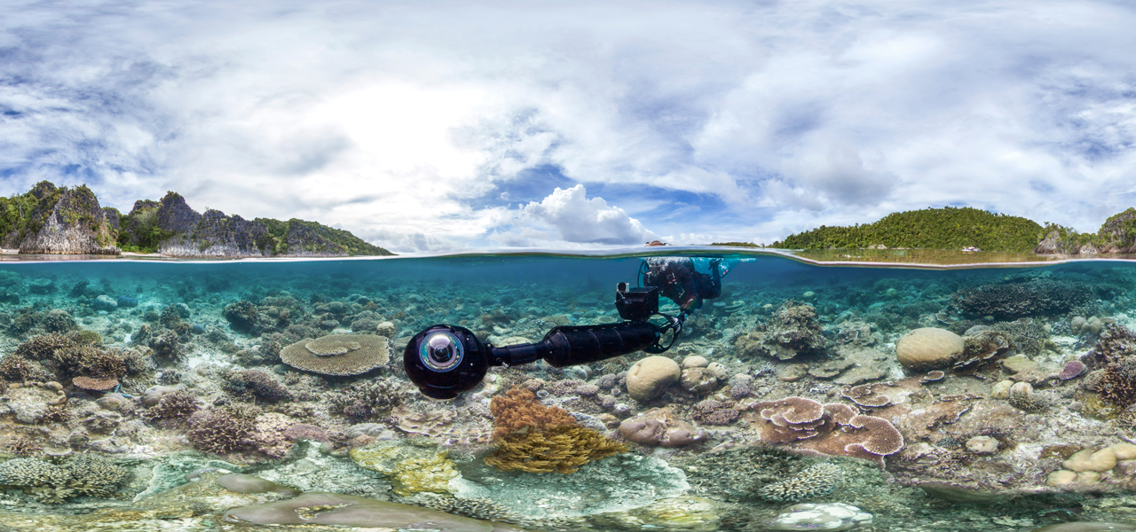 Photo Courtesy of the Ocean Agency